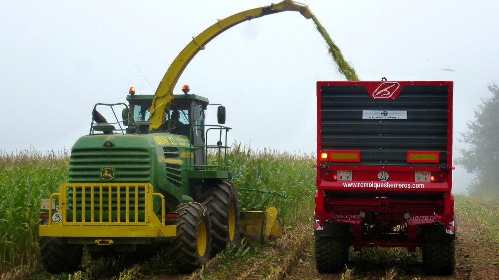 Rasla zaposlenost tokom leta, manje poljoprivrednika